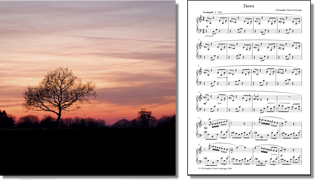 Chris Green-Armytage - Dawn composition